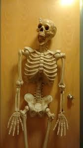 spirit halloween store kingman az 42 best halloween images on pinterest