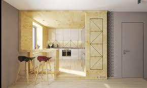 kitchen cabinet plywood delectable 30 plywood kitchen designs design ideas of home dzine