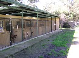 Outdoor Kennel Ideas by Room New Dog Room And Board Home Design New Fresh At Dog Room