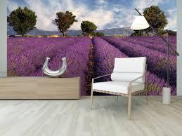 ohpopsi wallpaper murals fields of lavender wall mural