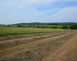 vacant land for sale landleader leavenworth 80 acre farm
