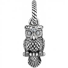 owl necklace pendants images Abc wisdom owl charm charms jpg