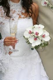 wedding flowers orchids orchids at your wedding orchid care zone