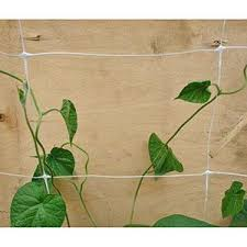 Climbing Plant Supports - climbing plant support net ooo npo protect russia