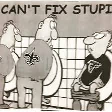Saints Falcons Memes - funny falcons and saints cartoons falcons best of the funny meme