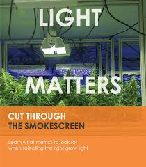 Plant Lights How To Choose by How To Choose Grow Lights