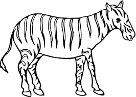 zebra coloring free printable coloring pages