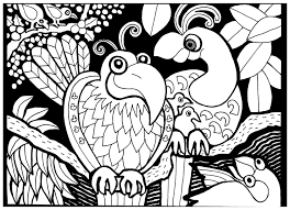 africa birds africa coloring pages for adults justcolor