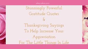stunningly powerful gratitude quotes and thanksgiving sayings to