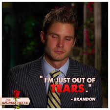 Bachelorette Meme - 27 best first look images on pinterest the bachelorette auntie