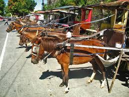 kalesa philippines the world u0027s best photos of kalesa and vacation flickr hive mind