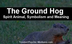 groundhog spirit animal complete guide