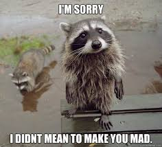 Funny Sorry Memes - i m sorry i didnt mean to make you mad sympathy coon quickmeme