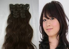 Human Hair Extensions With Clips by Human Hair Extensions Clip In Sally U2013 Trendy Hairstyles In The Usa