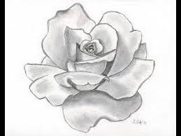 rose sketch youtube