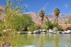 a small pond in the desert creates an oasis near the town of