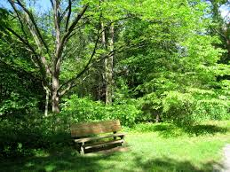 file botanical gardens at asheville bench jpg wikimedia commons