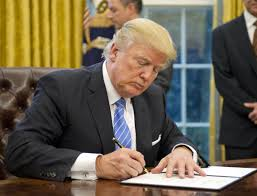 Which Of The Following Was Included In Washington S Cabinet Here U0027s What Donald Trump Did His First Week As President Of The