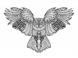falcon advanced coloring kidspressmagazine
