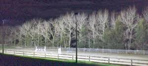 Outdoor Arena Lights by Horse Arena Floodlights