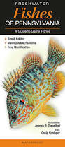 freshwater fishes of pennsylvania u2013 quick reference publishing