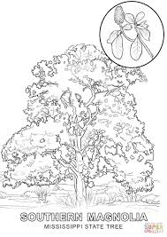 hawaii state bird coloring page redcabworcester redcabworcester