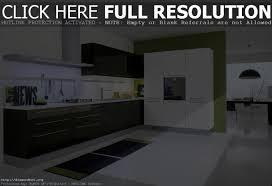 contemporary kitchen design best kitchen designs
