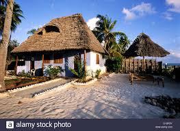 tanzania zanzibar archipelago unguja island zanzibar jambiani