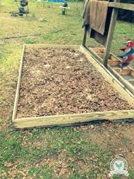 What Type Of Wood For Raised Garden - best 25 cheap raised garden beds ideas on pinterest raised