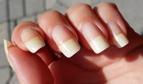 nail art designs for long nails image collections nail art designs