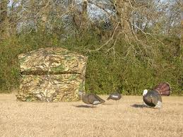 Best Deer Hunting Blinds The 5 Best Turkey Blinds Worth The Price Pics