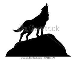 belgian shepherd silhouette editable vector silhouette roaring male lion stock vector