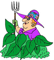 vegetable garden clipart free images clipartbarn