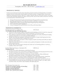 examples of professional profiles on resumes how to write a resume objective free resume example and writing example of a good marketing resume how to write a resume college 12751650 example resume marketing