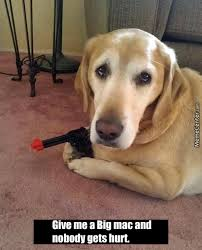 Puppy Eyes Meme - if the puppy eyes won t work i will use the gun by recyclebin meme