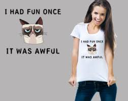 Grumpy Cat Meme I Had Fun Once - grumpy cat etsy