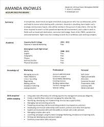 executive resume examples 27 free word pdf documents download