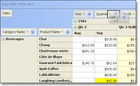 javafx grid layout exle jide software jide pivot grid a pivot table component in java swing