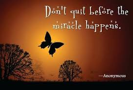 quotes about butterflies and top caterpillar miracle quote