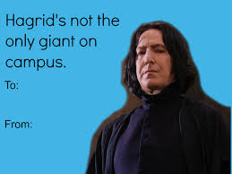 Valentine Card Meme - harry potter funny meme hp valentines day valentine cards harry