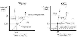 chem 103 lab u203a co2 enthalpy of sublimation reaction and metabolism