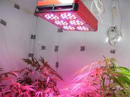 dsi indoor outdoor led flexible lighting strip led indoor garden lights dobroeutro