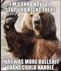 Funny Bear Meme - i am gonna have to stop you right there funny bear meme image stop