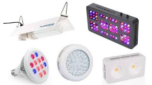 top 10 best cheap grow lights for cannabis your easy buying guide