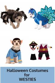 gift ideas for halloween 151 best gift ideas for westie lovers images on pinterest