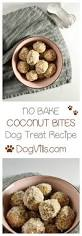 Bench Dog Cookies Best 25 Food For Dogs Ideas On Pinterest Human Food For Dogs