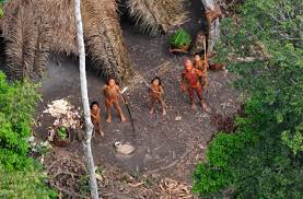 native plants in the amazon rainforest uncontacted tribes the last free people on earth u2013 national