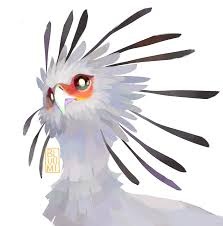 cartoon cockatiel θ birb of the week secretary birdthese birbs of prey have