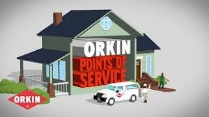Orkin Bed Bug Spray Orkin Pest Control Viyoutube Com