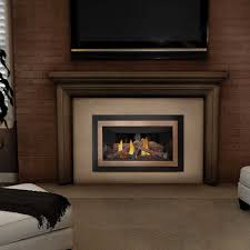 napoleon gdizc n basic natural gas fireplace insert w glass at